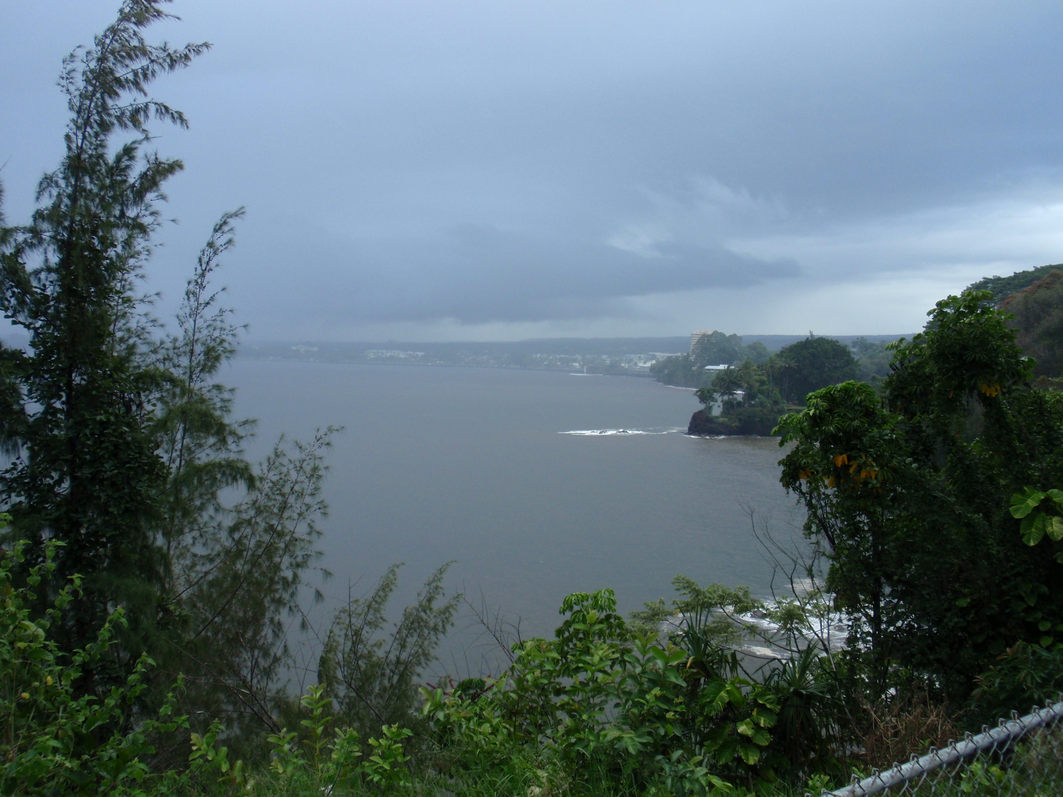 Hilo in the rain